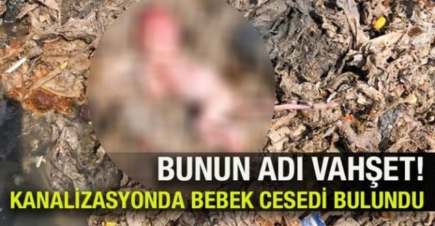 Bu haber Zonguldak'tan!…