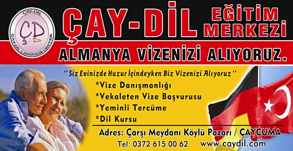 caydilbanner