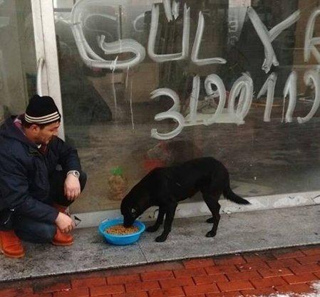 Kozlu Belediyesi Sokak Hayvanlarını Unutmadı