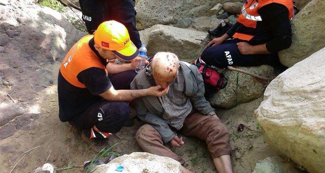 İki gün boyunca başı kayalara sıkışmış halde kaldı