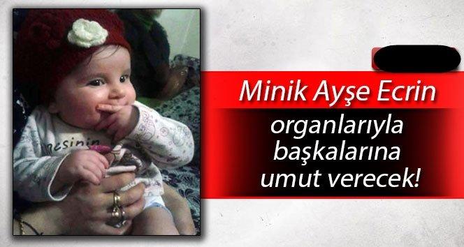 Minik Ayşe Ecrin'in organları başkalarına umut verecek