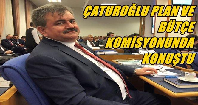Çaturoğlu Bütçe Görüşmelerinde Zonguldak'ı Konuştu