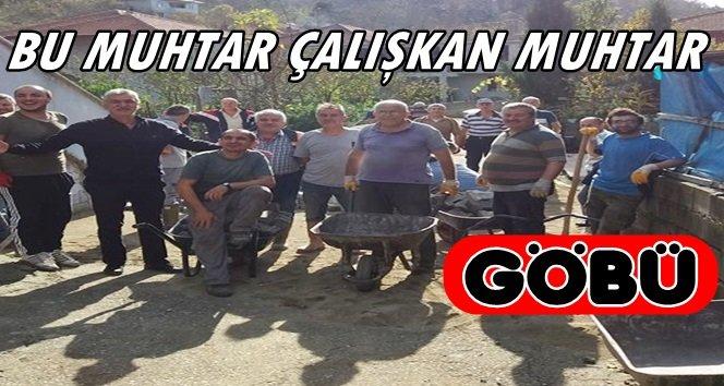 Göbü Köyü Halkı Muhtarla Birlikte Taş Döşüyor