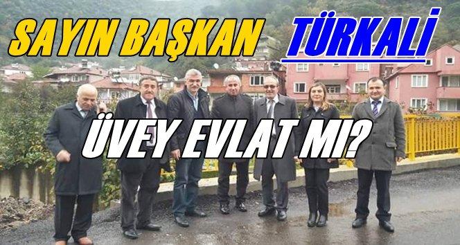 Sayın Karaveli Türkali'yi Haritadan Mı Sildiniz?