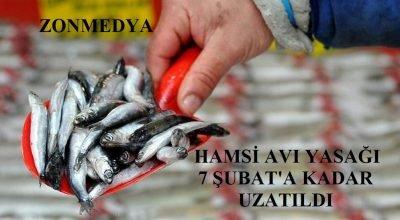 Karadeniz'de hamsi avı yasağı 7 Şubat'a kadar uzatıldı